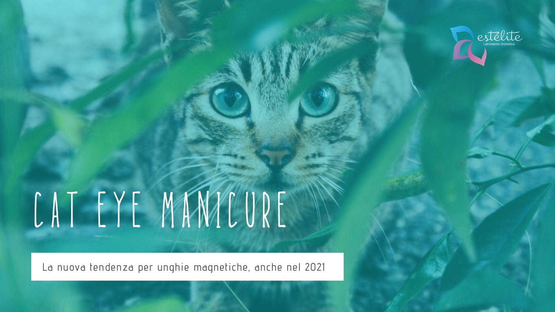 Cat Eye Manicure